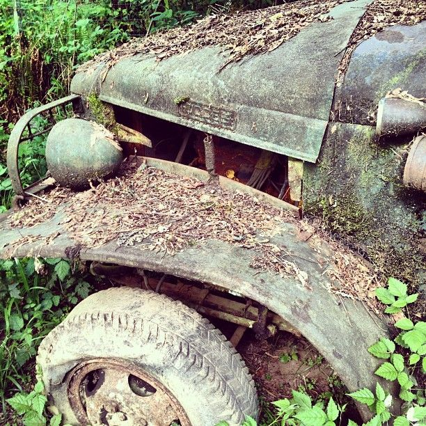 Old, abandoned truck in Sandy, OR by @optimiss_prime via @Instacanv.as #abandoned #old #truck