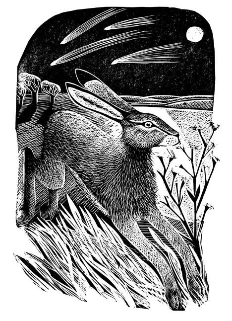 Hare and Moon - Angela Harding