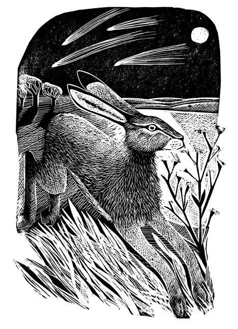 Hare and Moon - Angela Harding
