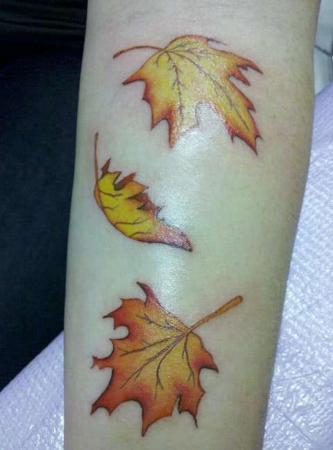 best 25 fall leaves tattoo ideas on pinterest autumn tattoo leaf tattoos and winter tattoo. Black Bedroom Furniture Sets. Home Design Ideas