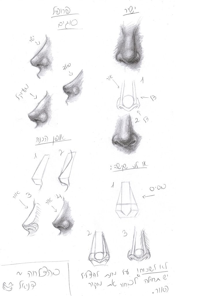 how to draw female noses step by step