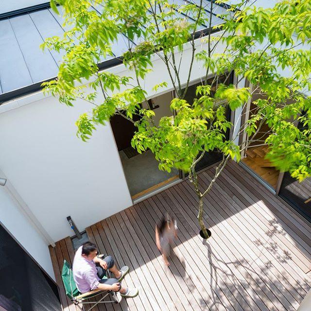 最近 中庭のご要望が多いです 広いお庭 から プライベートを