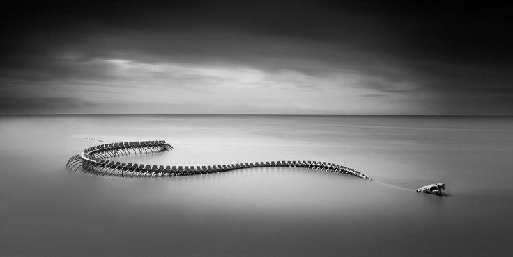 'Serpent d'océan', na verdade é um dragão sino-francês construído em 2012 pelo artista Huang Yong Ping às margens do rio Loire