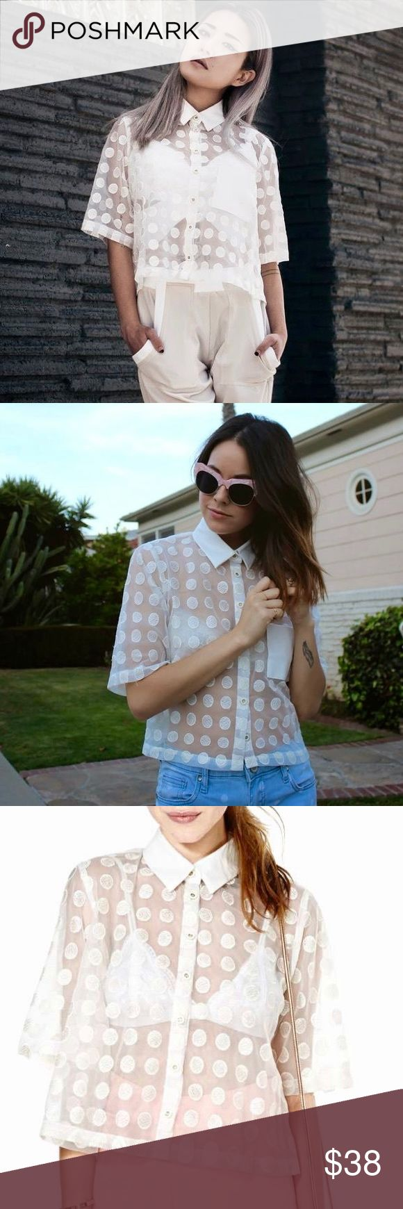 NASTY GAL POLKA DOT CROP TOP This adorable top is sheer with patched polka dots😍 the pocket and collar are leather material! Worn once to a festival but got it very dirty there 😅 the collar has some gray marks! I will post more pictures of that very soon but still a beautiful piece 🔥 Nasty Gal Tops Crop Tops