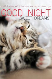 lovely good night sweet dreams messages