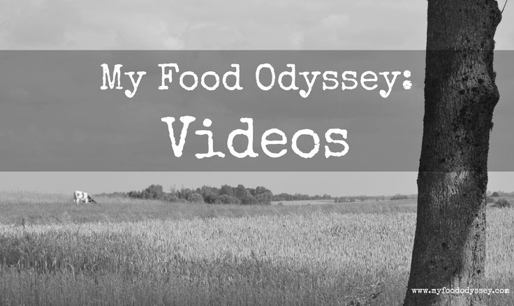 My Food Odyssey: Videos Board Cover