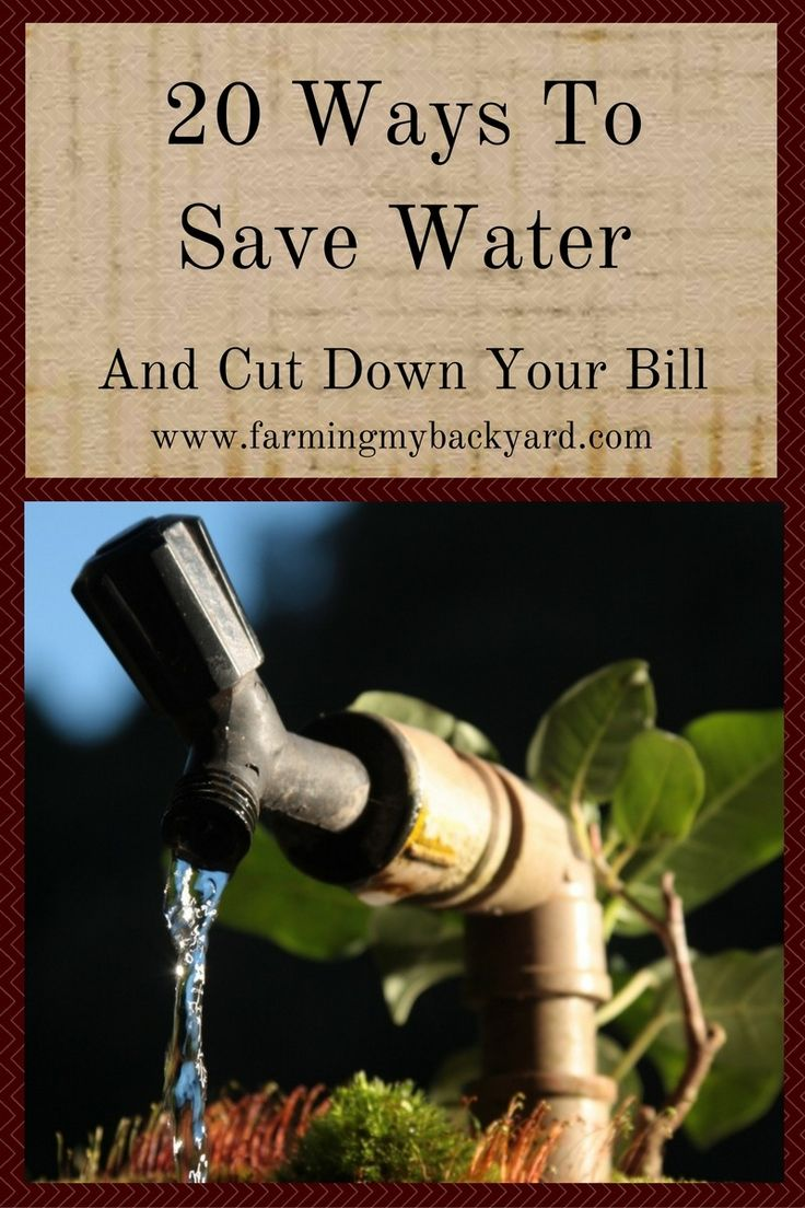 In a drought? High water bills? Well running low? Here are some ways to save water and money on your bill.