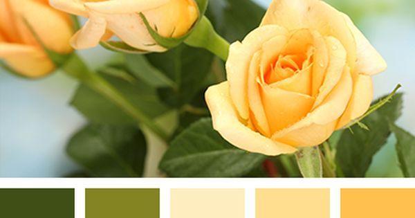 Liked on Pinterest: коричнево-желтый цвет коричневый оттенки желтого оттенки зеленого оттенки коричневого подбор цвета салатовый тёмно-зелёный цвет груши цвет зеленой груши цветовое решение для дома яркий желтый яркий салатовый.