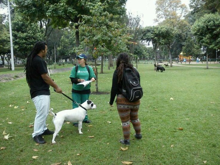 19/02/14 Equipo territorial de Chapinero con apoyo de promotoras realizan sensibilización a dueños y paseadores de mascotas en el Parque El Virrey.