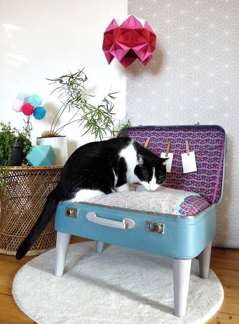 DIY panier pour chat, chien. Fabriquer un panier pour animal de compagnie à partir d'une vieille valise.
