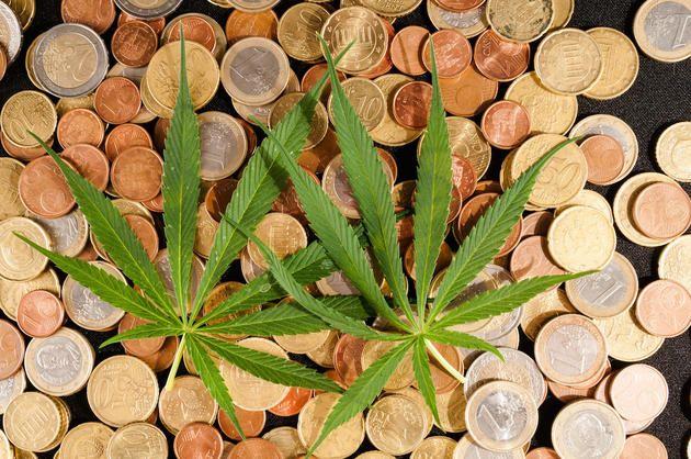 Colorado Marijuana Tax Holiday: Why to Skip It
