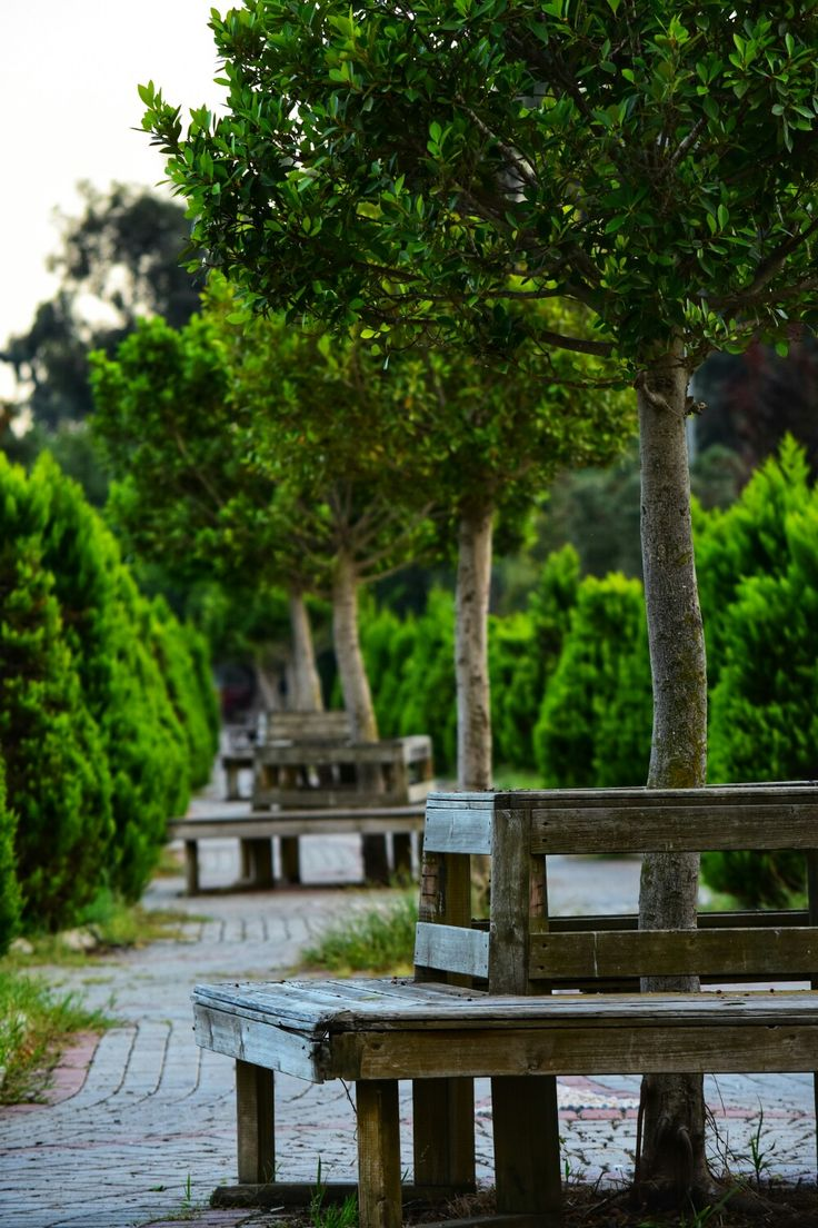 #park #adana #merkezpark