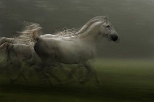 Spectacular Slow Shutter Speed Digital Photography