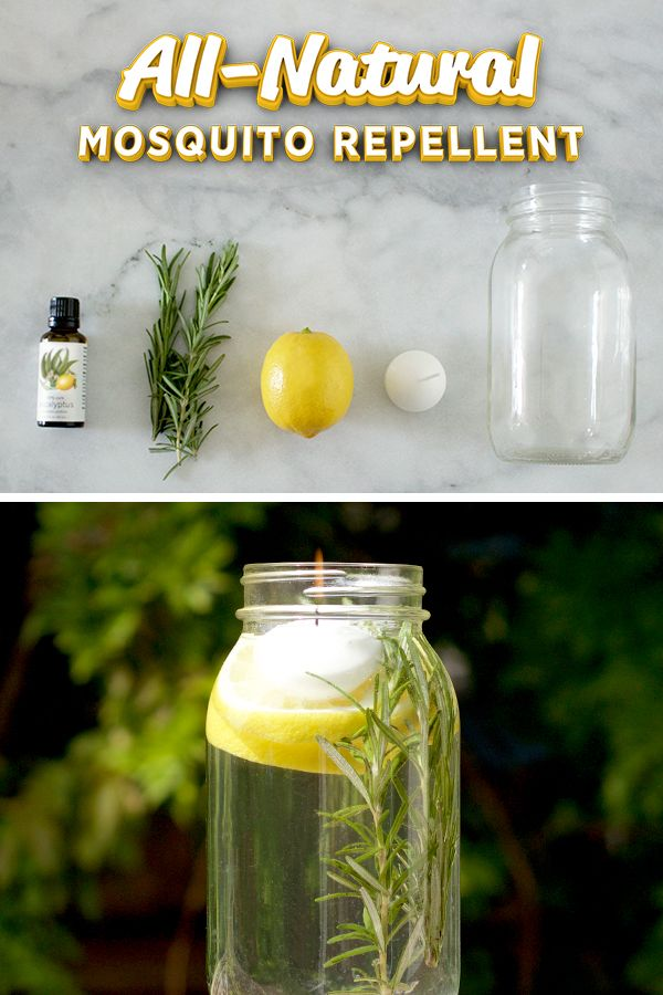 Lemon Eucalyptus Oil is key to this all-natural solution which the CDC recommends as an effective all-natural bug repellent. Simply add 7-10 drops of the oil to a jar of water with lemon slices and a couple rosemary sprigs. Top with a floating candle and set outside.