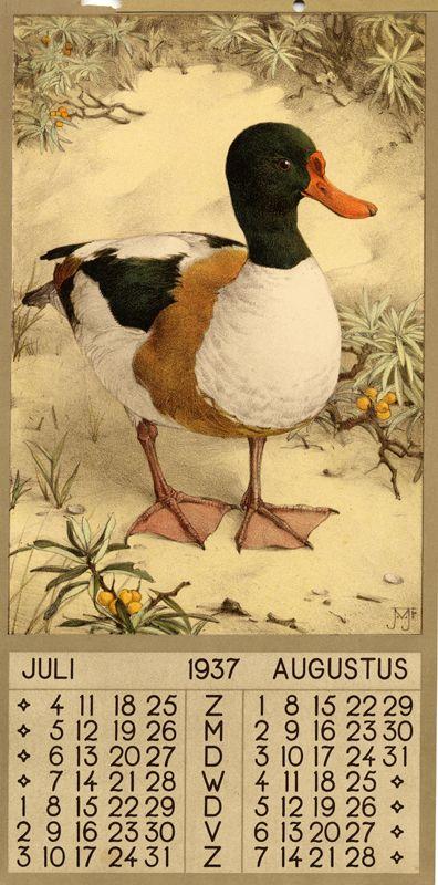 ¤ 1937 - July Augustus 1 calendar, 6 leaves : col. ill. ; 39 x 20 cm. Créateur: Voerman, Jan, Jr. ( illustrator )