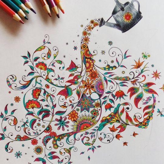 Johanna Basford | Colouring Gallery - Secret Garden - watering can