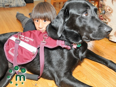 Cobourg girl gets autism service dog: Cobourg Girls, Autismasperg Syndrome, Dogs Guide, Autism Asperger Syndrome, Service Dogs, Canada Dogs, Syndrome Info, Autism Service, God Gifts