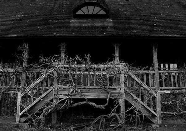 Desde los campos estériles a los edificios poblados; Los fantasmas han hecho en casi todos los lugares en el mundo sus hogares. A diferencia de nosotros, que no discriminan, si se trata de un manicomio en Australia, o en una cárcel del estado oriental; Hoteles, cárceles, castillo o los edificios del gobierno – son todas sus residencias. Los lugares con ...