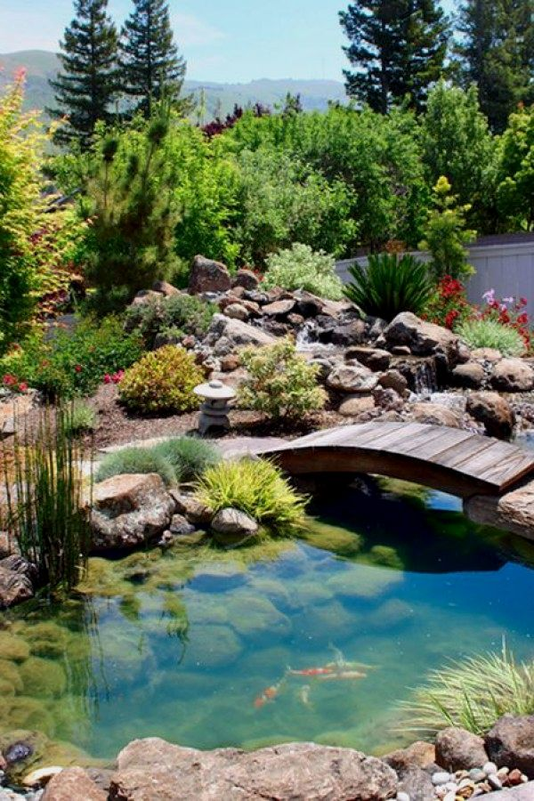 Beautiful Diy Koi Pond Plans You Can Build To Add Beauty To Your