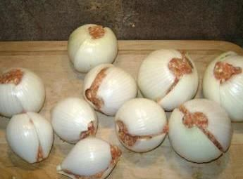 #Campfire onion bombs, stuff an onion with ground meat and seasonings. Roll in foil, toss in fire for 10 min, roll around then cook 10 min more. #paleo