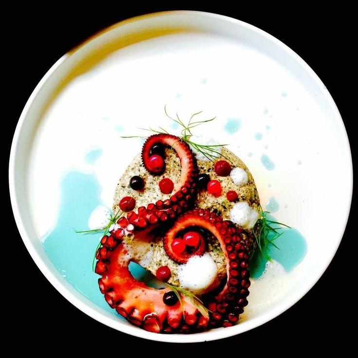 15 best Molecular Food - Salad images on Pinterest Molecular - molekulare küche starterset