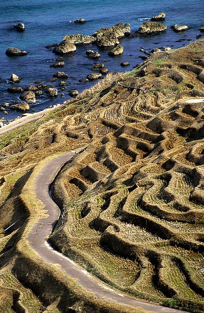 Terraced rice paddy at Wajima, Ishikawa, Japan 白米千枚田 石川