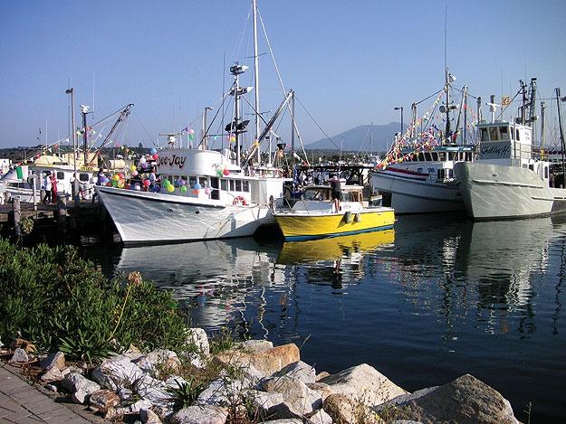 Bermagui Harbour, Australia