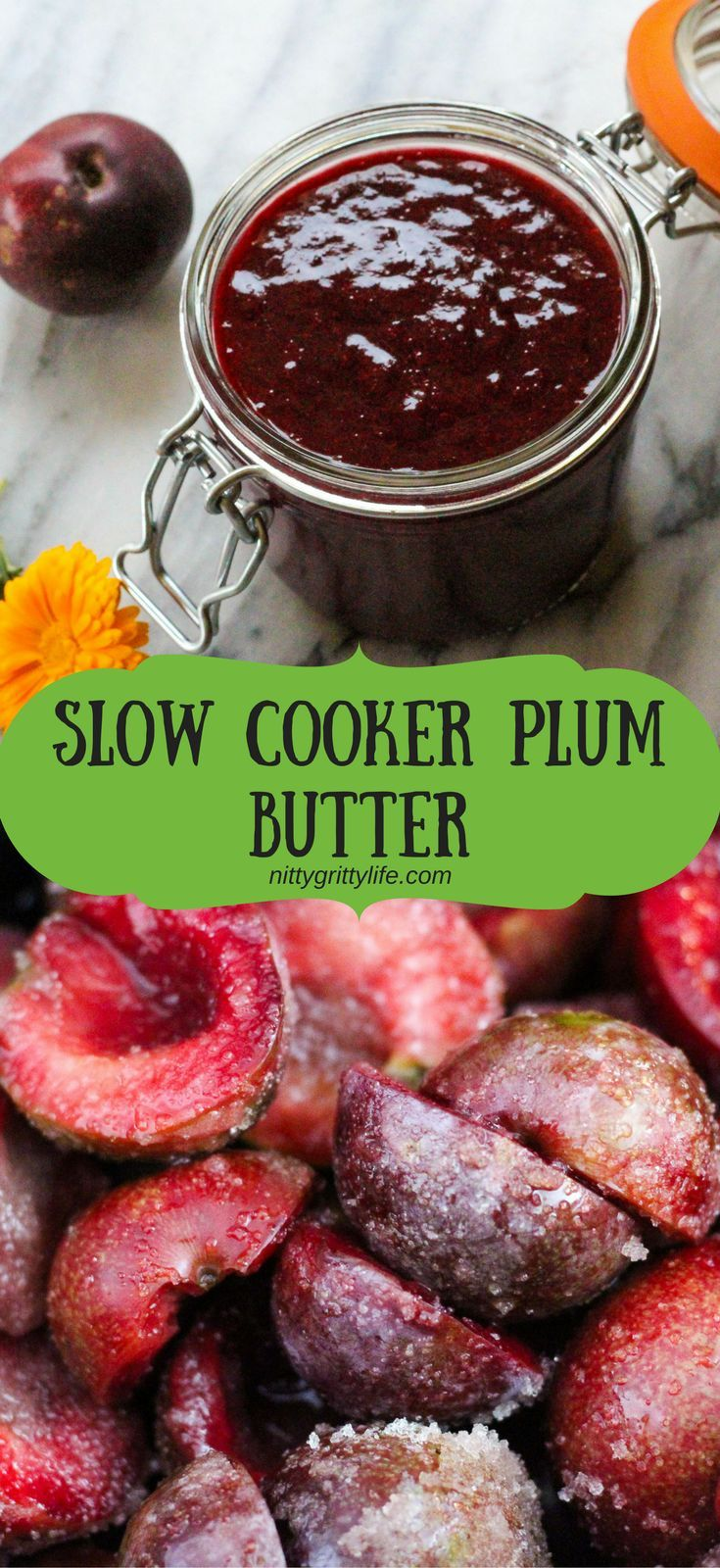 Plum butter made in the slow cooker results in a rich, flavorful fruit spread ever so slightly nuanced with the almond notes of the plum pits.  This canning recipe makes approximately 4 half-pints.