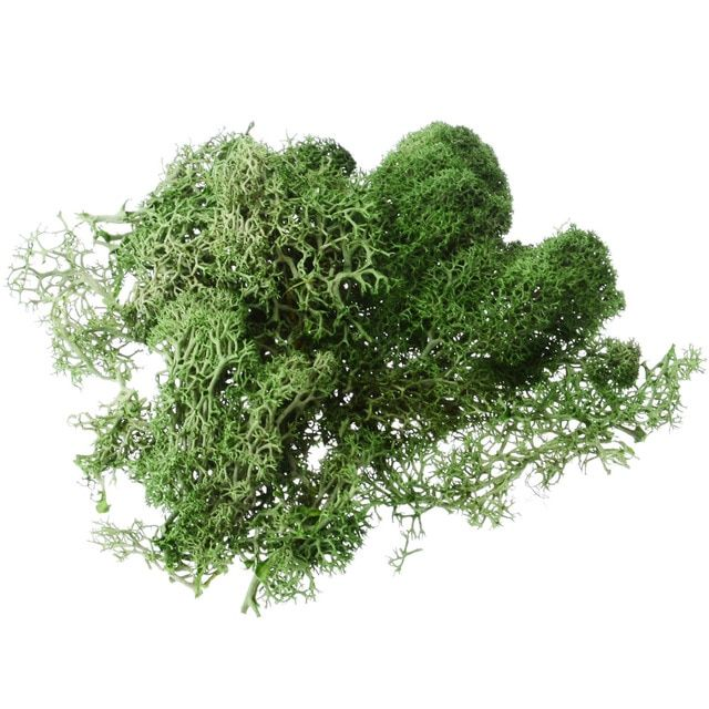 Mayitr 1pcs 10g Creative Artificial Moss Solid Color Fake Moss