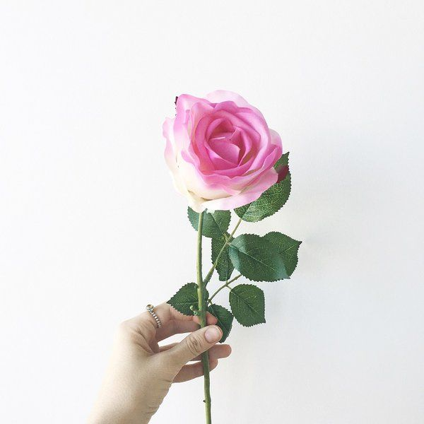 The 20 best roses images on pinterest gypsy silk flowers and pretty pink and white real touch rose flower mightylinksfo