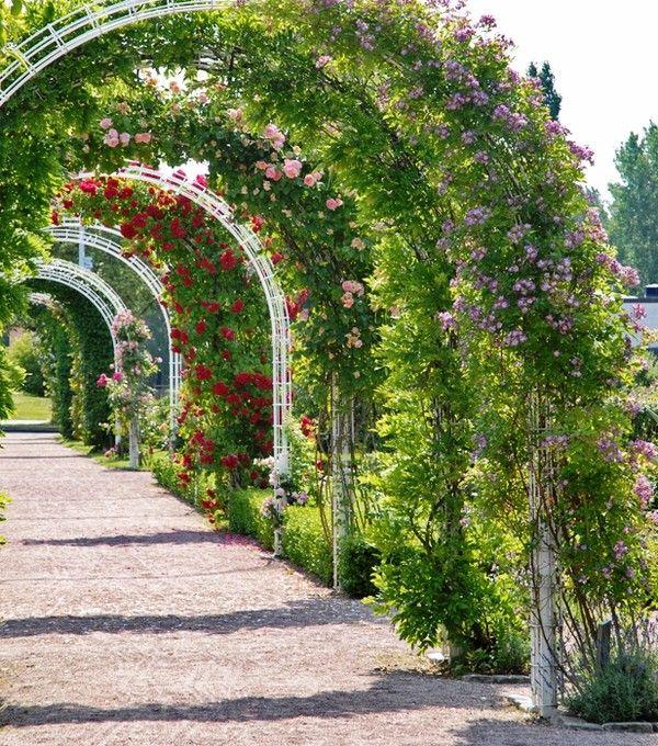 rosenträdgård - Sök på Google