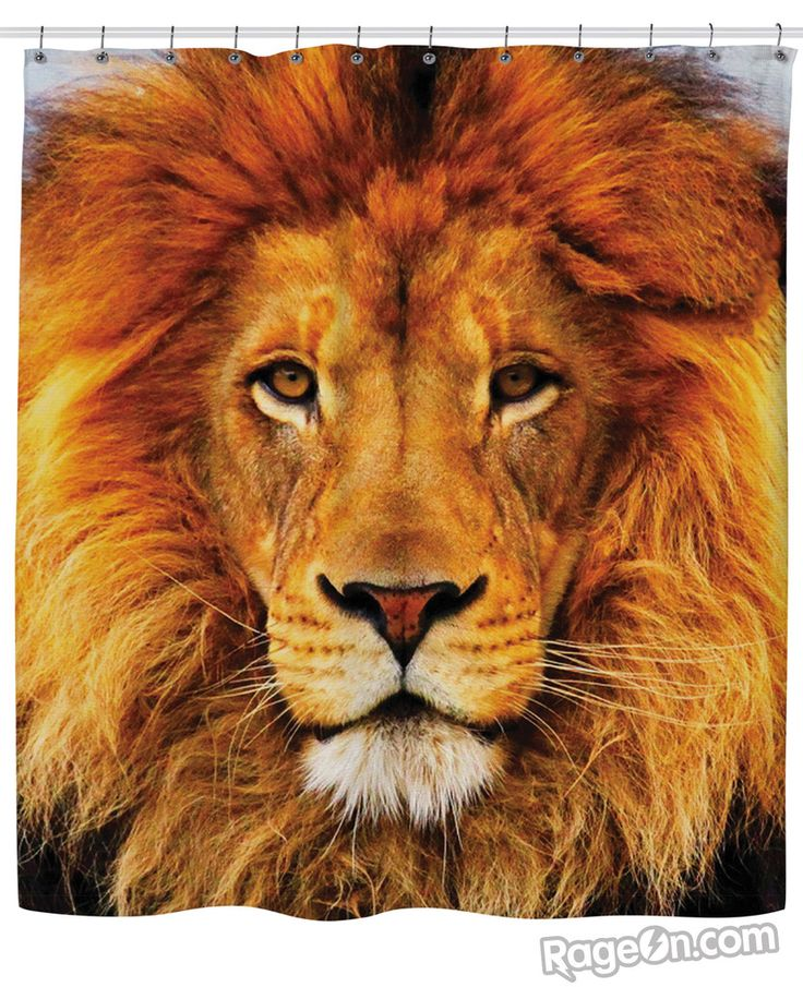 Lion Shower Curtain Google Search African Party Ideas
