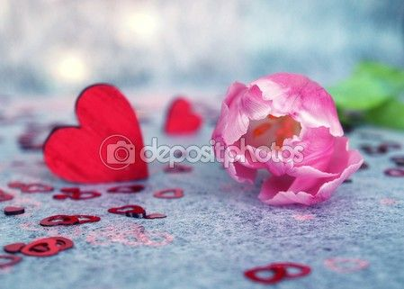 Valentine's Day Folder with Stock Photos and Vector Images | Depositphotos® #34683364