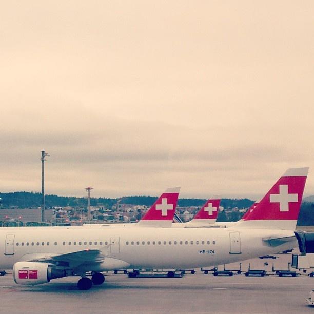 #zurich #zurigo #zurichairport #aeroportozurigo #svizzera #flughafen #flughafenzürich #aeroporto #swiss #swissair #aeropuerto #cross #lacolz #schweiz #switzerland #suiza #suisse #aerei #aircraft #aéreo #zurich #zurigo #zurichairport #aeroportozurigo #svizzera #flughafen #flughafenzürich #aeroporto #swiss #swissair #aeropuerto #cross #lacolz #schweiz #switzerland #suiza #suisse #aerei #aircraft #aéreo