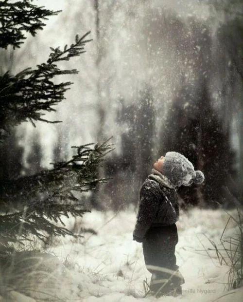 Фото: #променя #такойдень  Вся наша реальность состоит из бесконечной борьбы между тем, что действительно было, и тем, что не хочется вспоминать. Харуки Мураками  ...всем самого светлого и уютного праздничка... всем самого удивительного и чудного Нового года, проведите его с теми кого любите... Пам пам... и будьте добрее, доброта, а вовсе не красота спасет этот мир..  ..P.S. Ушел искать себя, до встречи в следующем году...