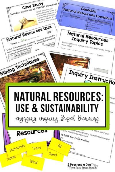 sustainability paper topics