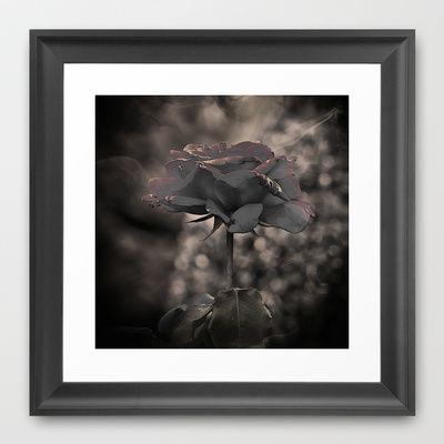 Rose Framed Art Print by AngelEowyn - $34.00