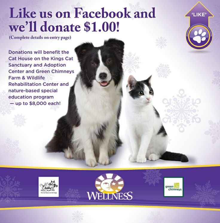 like on Facebook at Wellness to donate a dollar, please