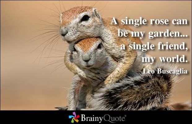 A single rose can be my garden... a single friend, my world. - Leo Buscaglia
