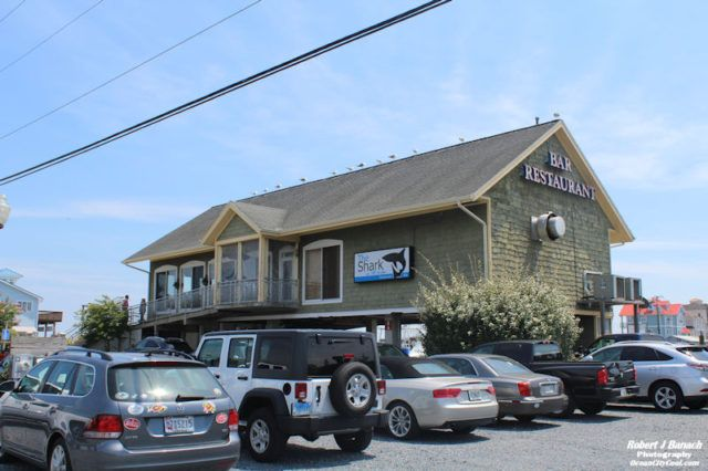 ISO a few good people to join our team! Server / Bartender Line Cook Bus Person Stop by to fill out application or email resume to: jody@ocshark.com Hope to meet you soon! Shark on the Harbor 12924 Sunset Ave. Ocean City, MD 21842  #oceancitycool