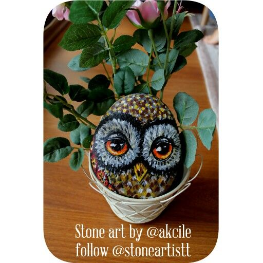 Yes again owl ,everytime  owlthey're incredible @akcile @stoneartistt