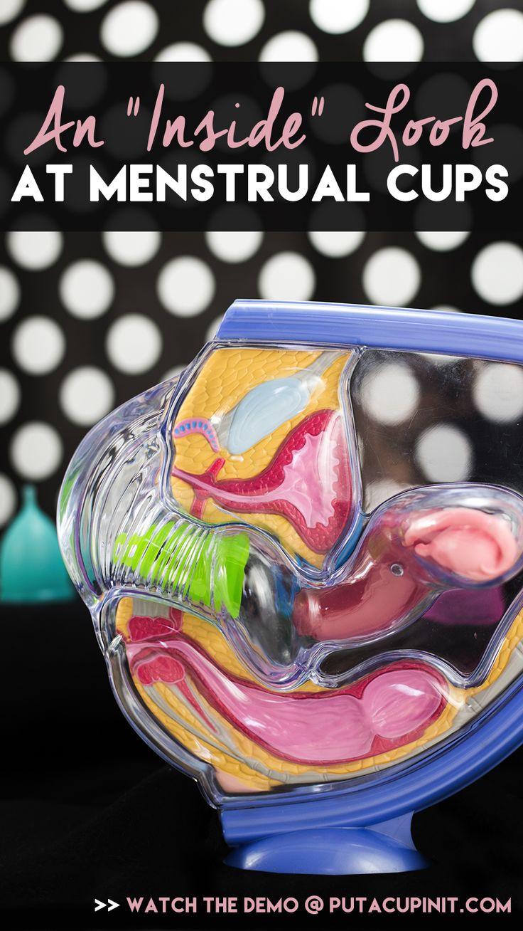 Inside Look at Menstrual Cups