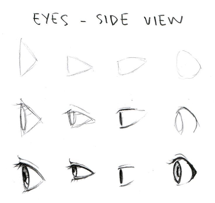 http://1.bp.blogspot.com/-U3Ltk8LAgos/UJ0mTM2rVhI/AAAAAAAAAWk/ggg70IDhNDY/s1600/eye_shapes_side_view.jpg