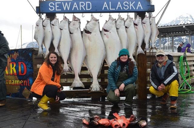 17 best images about fish on on pinterest summer time for Best time to fish in alaska