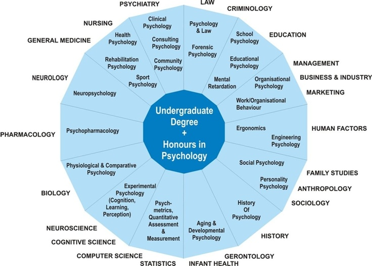 Undergraduate degree Psychology Psychology careers
