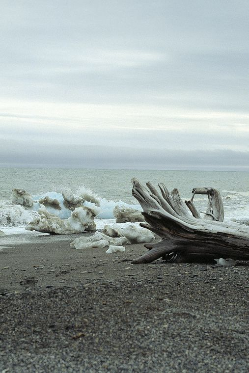The Beaufort Sea and Icy Reef with Drift Logs from the Mackenzie River, Alaska | by JGHurst, via Flickr