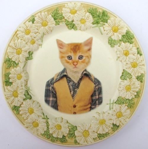 Awesome: Cats, Vintage Plates, Plates Art, Schools Portraits, Tommy Cat, Antiques Plates, Altered Vintage, Portraits Altered, School Portraits