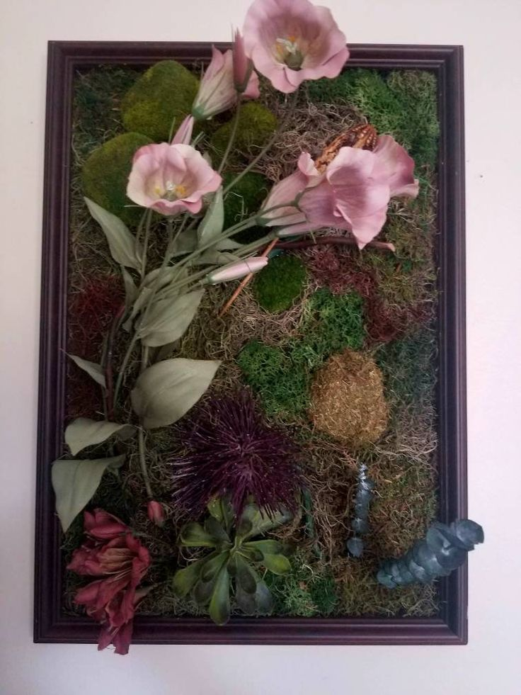 Living Wall Art OOAK Framed with Dried Preserved Moss