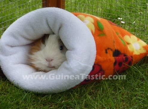 How To Make A Cozy Sack - sewing tutorial. Could be used for rats.