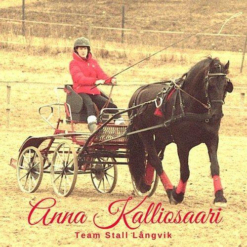 Hösten har fört med sig mycket nytt och bland det finaste är Anna Kalliosaari och möjligheterna att öppna dörrarna för fler elever och nya verksamheter. Läs mer om vårt team på hemsidan.